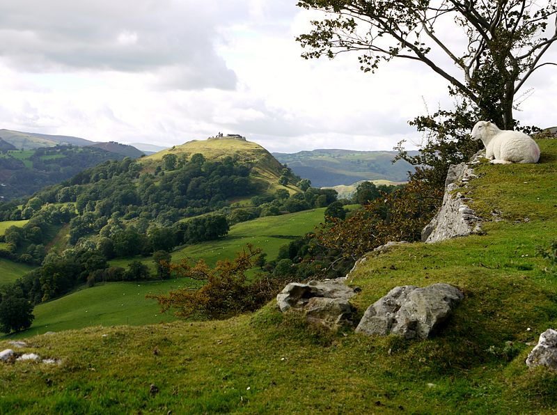 LLangollen Castello di Dinas Bran PhotoCredit Ultimax Wikimedia Commons