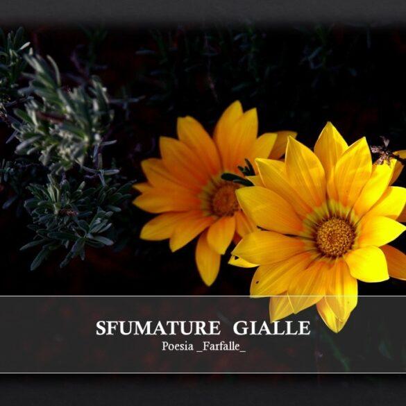 Sfumature gialle Farfalle Pht Emanuela Gizzi Mapping Lucia
